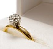 диамант гнездился кольцо Стоковое Изображение
