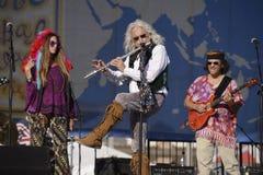 Диапазон дани Woodstock стоковые изображения