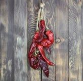 Диез перца красный весит на ногте Стоковые Фотографии RF