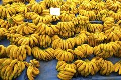 Диета овоща плодоовощ вытрезвителя лета весны Закройте вверх кучи сбора Стойка супермаркета чистого и сияющего assor овощей/плодо Стоковые Изображения