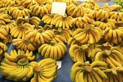 Диета овоща плодоовощ вытрезвителя лета весны Закройте вверх кучи сбора Стойка супермаркета чистого и сияющего assor овощей/плодо Стоковое Изображение RF