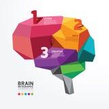 Дизайна мозга вектора стиль полигона infographic схематический Стоковое Фото