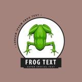 Дизайнерский логотип с лягушкой иллюстрация штока