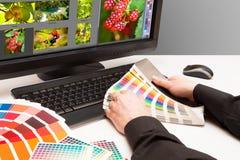 Дизайнер на работе. Образцы цвета. Стоковое Изображение