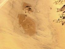 Дизайны дюны Стоковая Фотография