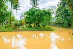 Дизайн ландшафта ослабляет тропический сад Стоковые Фото