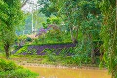 Дизайн ландшафта ослабляет тропический сад Стоковое Фото
