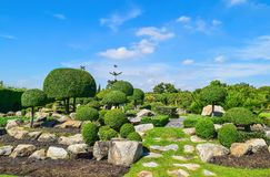 Дизайн ландшафта сада Стоковые Фотографии RF
