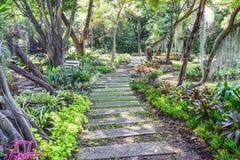 Дизайн ландшафта сада Стоковое Изображение