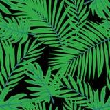 Дизайн вектора листьев лета тропический r Предпосылка вектора Doodle с листьями иллюстрация вектора