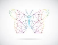 Дизайн вектора dragonfly Стоковые Фото