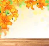 Дизайн границы цветков лилии лето сада цветков цветения Стоковые Изображения