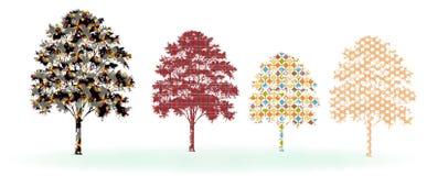 Дизайн дерева Стоковое Фото