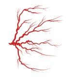 Дизайн значка символа вектора вены глаза красный бесплатная иллюстрация
