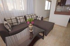 Дизайн интерьера комнаты роскошной квартиры живущей Стоковые Фото