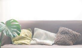 Дизайн интерьера с софой и разнообразие подушками стоковое фото rf