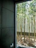 Дизайн интерьера Французское окно с бамбуковым снаружи стоковое изображение rf