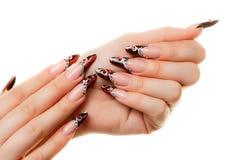 Дизайн искусства ногтей Стоковые Изображения