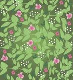 Дизайн иллюстрации флористический Стоковые Фотографии RF