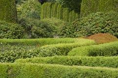 Дизайн картины сада Стоковые Фотографии RF