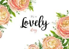Дизайн карточки стиля акварели вектора флористический: розовый персик розовое Ranu Стоковые Фотографии RF