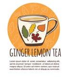 Дизайн карточки чая лимона имбиря Стоковое фото RF