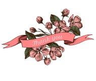 Дизайн ленты цветков яблока с спасибо поет Нарисованная рукой иллюстрация вектора бесплатная иллюстрация
