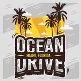Дизайн лета Miami Beach Флориды привода океана с иллюстрацией пальм Стоковые Изображения