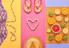 Дизайн моды Тропический комплект лета яркий цвет Стоковые Изображения