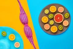 Дизайн моды Тропический комплект лета яркий цвет Стоковая Фотография