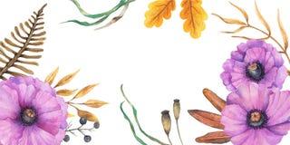 Дизайн осени предпосылки акварели с гербарием, пестрой листвой изолированной на белой предпосылке, Нарисованное вручную illustrat стоковые фото