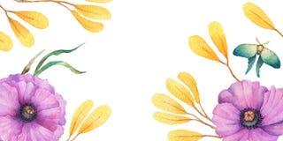 Дизайн осени предпосылки акварели с гербарием, пестрой листвой изолированной на белой предпосылке, Нарисованное вручную illustrat стоковая фотография