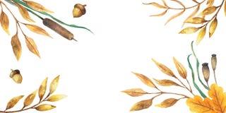 Дизайн осени предпосылки акварели с гербарием, пестрой листвой изолированной на белой предпосылке, Нарисованное вручную illustrat стоковое изображение rf