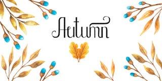 Дизайн осени предпосылки акварели с гербарием, пестрой листвой изолированной на белой предпосылке, Нарисованное вручную illustrat стоковые изображения rf
