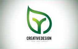 Дизайн письма логотипа лист y с зеленым планом лист Стоковая Фотография RF