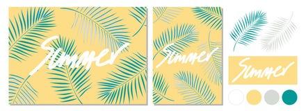 Дизайн плаката на лето с каллиграфией и листьями кокоса Стоковые Изображения
