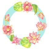 Дизайн поздравительной открытки рамки круга розовых цветков лотоса на голубом фоне кольца, белой предпосылке Стоковые Изображения RF