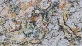 Дизайн предпосылки декоративного камня оникса красивый Стоковые Фото