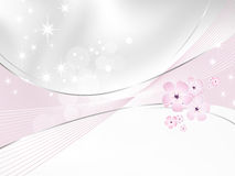 Дизайн предпосылки цветка - белый и розовый флористический Стоковые Изображения RF