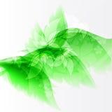 Дизайн предпосылки цветка Стоковое фото RF