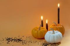 Дизайн причудливой тыквы хеллоуина установленный с малыми черными алмазами и стоковые изображения