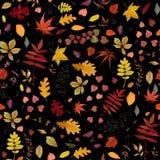 Дизайн стиля акварели безшовного вектора картины осени флористический: o Стоковые Изображения