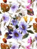 Дизайн цветка акварели Стоковые Фото