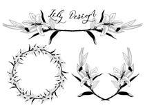Дизайн цветка лилии вектора Рассекатель, рамка и венок бесплатная иллюстрация