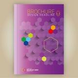 Дизайн a4 шаблона вектора брошюры Стоковое фото RF