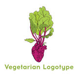 Дизайн шаблона значка логотипа сердца бураков vegetable Фиолетовый логотип значка свеклы Свежая вегетарианская концепция Логотип  Стоковое фото RF