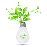 Дизайн энергии ECO при дерево растя от шариков ilusstrati Иллюстрация вектора