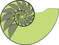 Дизайн Nautilus Стоковое Фото