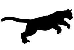 дикая кошка Стоковые Изображения RF