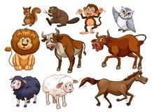 Дикие животные в различных типах иллюстрация вектора